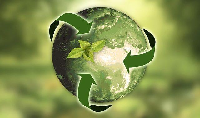 LVM veröffentlicht ersten Nachhaltigkeitsbericht