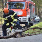 Sturmschäden: Wann haben Sie Anspruch auf Schadenersatz