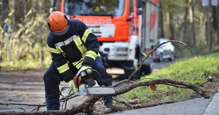 Herbstanfang: Rechtzeitig auf Stürme vorbereiten und Schäden vorbeugen