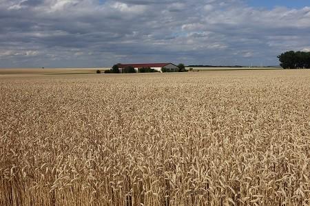 Versicherungen der Versicherungskammer Bayern für Landwirte