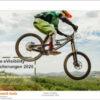 eVisibility: Allianz sichert sich Top-Ränge in allen Online-Kategorien