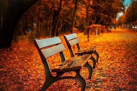 Den Herbsturlaub sorgfältig planen