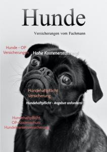 Informationsmagazine und Kundenzeitungen einfach mit PR-FAIR erstellen