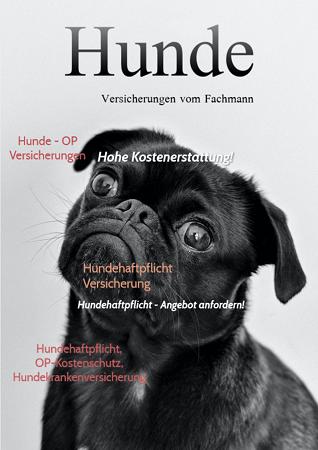 Kundenmagazin Hunde-OP Versicherung