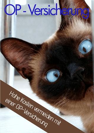 Kundenmagazin Katzen OP Versicherung